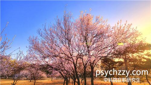 中科院心理所课程研修班大数据心理学专业招生情况